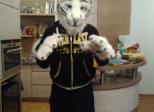 Felix Stripes fursuit