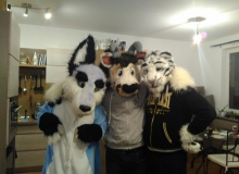 Zuzu, Zanzibar and Felix Stripes fursuit