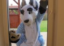 Zuzu trough the window